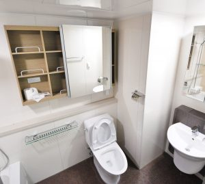 6 Crazy Things Flushed Down the Toilet