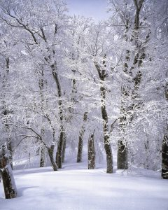 6 Surprising Facts about the First Day of Winter