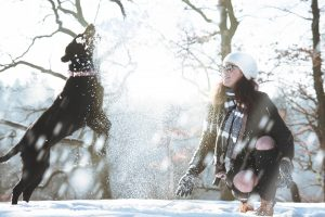 The Dangers of Cold Weather for Pets